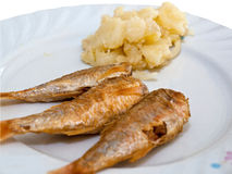 Fried fish with potatoes Royalty Free Stock Images