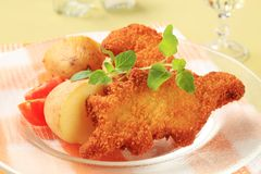 Fried fish and potatoes Royalty Free Stock Images