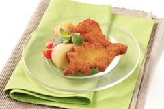 Fried fish and potatoes Royalty Free Stock Photos