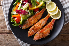 Fried fish red mullet with fresh vegetable salad close-up. horiz Stock Image