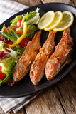 Fried fish red mullet with fresh vegetable salad close-up. verti Stock Image