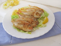 Fried fish. Red Mullet. Stock Images