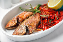 Fried fish with red peppers Royalty Free Stock Photography