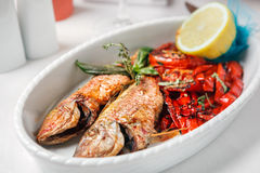 Fried fish with red peppers Stock Image