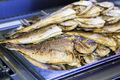 Fried fish in a restaurant tray Stock Image