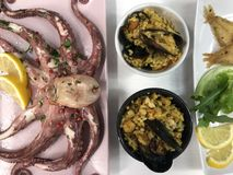 Fried fish,rice with mussels and octopus on dish Royalty Free Stock Photo