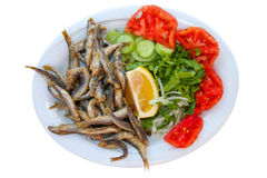 Fried Fish with Salad. This is the most popular seafood item in Aegean coast Cunda island of Turkey.Small fried fishes comes with salad in white plate royalty free stock photography