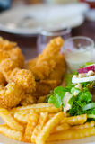 Fried fish with salad. Royalty Free Stock Photo