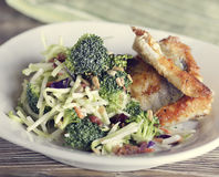 Fried Fish and Salad Stock Photography