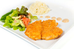 Fried fish with salad and mashed potatoes. Royalty Free Stock Photos