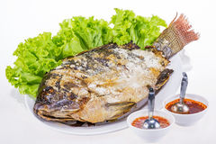 Fried fish with salad from Thai food Stock Image