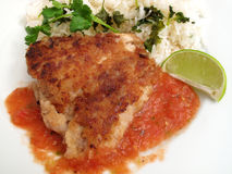 Fried Fish and Salsa Royalty Free Stock Photos