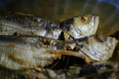 Fried fish Stock Image