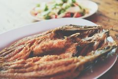 Fried Fish with Fish Sauce at Thai seafood market. Fried Fish with Fish Sauce or Snapper topped with sauce premium grade is a seafood display for sale at Thai royalty free stock images