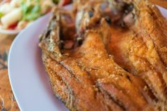 Fried Fish with Fish Sauce at Thai seafood market. Fried Fish with Fish Sauce or Snapper topped with sauce premium grade is a seafood display for sale at Thai royalty free stock image