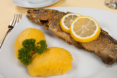 Fried Fish served with side salad Stock Image