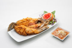 Fried fish served in white dish Stock Images