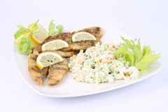 Fried fish with side salad Royalty Free Stock Image
