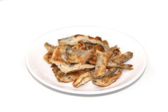 Fried fish smelt on the plate. On white background Stock Image