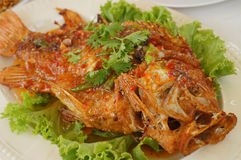 Fried fish spicy Stock Images