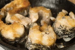Fried fish steaks in pan. Fry big pike fish in a frying pan. Fried fish steaks in pan. Fry big pike fish in a frying pan, Pieces of freshwater fish frying in a Stock Photos