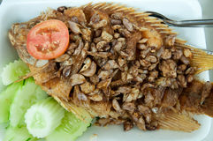 Fried fish thai food Stock Photo