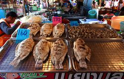 Fried fish in the Thai market royalty free stock photo