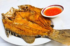 Fried fish with thai spicy seafood sauce. Royalty Free Stock Images