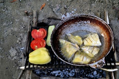 Fried fish, tomatoes and peppers on the grill. After the main course fish soup follows. Fried fish in skillet over. Forest is near us Bon Appetite royalty free stock image