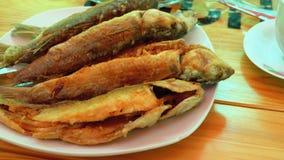 Fried Fish Trout cocinado en una placa en un restaurante metrajes