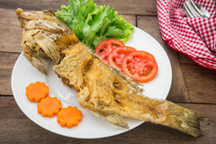 Fried fish with vegetables on plate Stock Photos