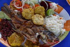 Fried fish with vegetables rice and frijoles Stock Photography
