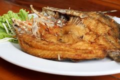 Fried fish with vegetables. On white dish Royalty Free Stock Photography