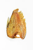 Fried fish on white background Royalty Free Stock Images