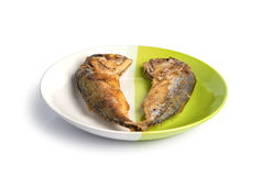 Fried fish on white and green plate. Stock Image
