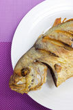 Fried Fish. Fried Fish On White Plate And Purple Background Royalty Free Stock Image