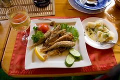 Fried fish and white wine Stock Images