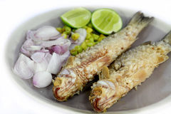 Fried fishes stock image