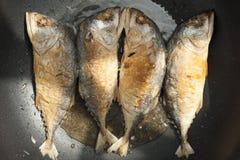 Fried Fishs Imagens de Stock
