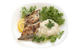Fried flounder with rice Royalty Free Stock Photo