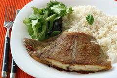 Fried flounder with rice Stock Photography