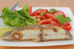 Fried flounder with salad Stock Photos