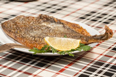 Fried flounder. Selective focus. Royalty Free Stock Images