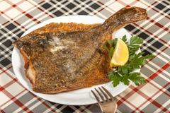 Fried flounder. Selective focus. Stock Photography