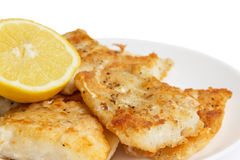 Fried in flour codfish on plate Stock Photos