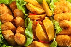 Fried Food. Deep Fried Food with Fresh Salad Leaf Stock Images
