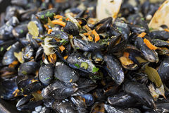 Fried fresh mussels on a pan Royalty Free Stock Images