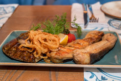 Fried freshwater catfish Stock Images