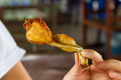 Fried frog leg Royalty Free Stock Photography