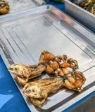 Fried frogs street food stock photo